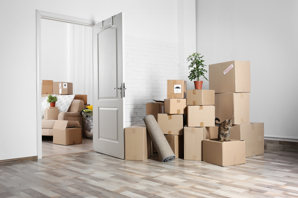 top moving company in redondo beach