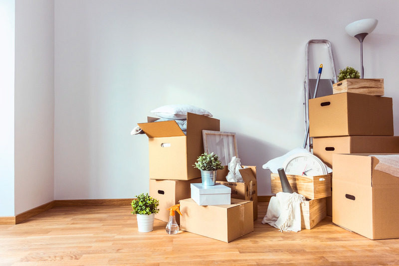 hate the thought of moving hire professional movers in bel air to help